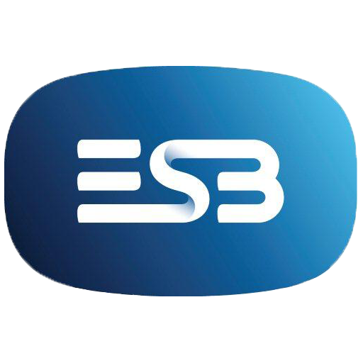 favpng_esb-group-electricity-esb-networks-electric-ireland-computer-network